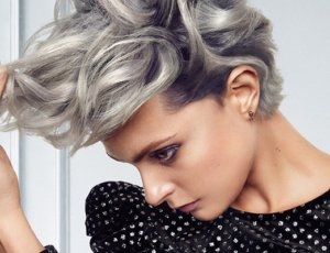 cabello gris
